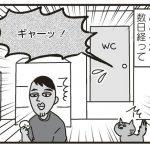 okiraku03_03