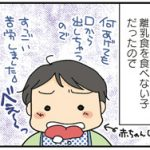 【離乳食】食べること食べない子。あまりの食欲の差にドキドキ!兄妹でもこんなに違うもの?!