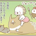 【悩み】赤ちゃんとペットとの共存どうする?「トリあたま子育て日記」第1話-2