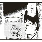 orehakowo42_10