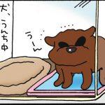 uchino3neko01_07
