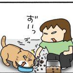 uchino3neko02_05